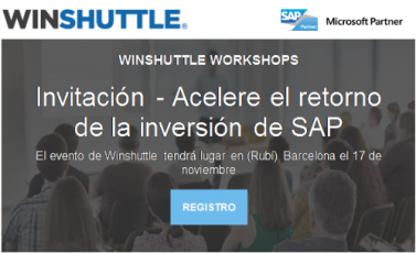 Evento Winshuttle Rubí